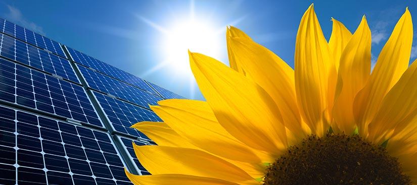 panneaux solaires à Bischwiller
